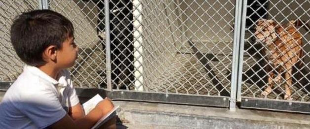 À esquerda da foto, Jacob lê para um cachorro que está dentro de uma gaiola.