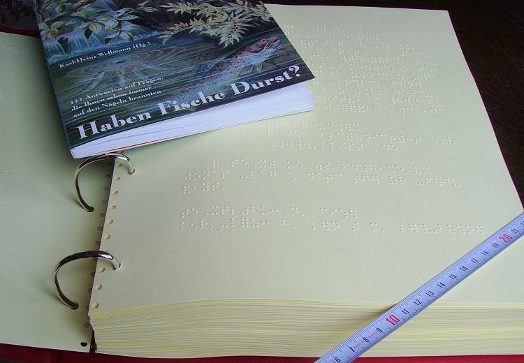 Um livro de ficção em uma mesa, ao lado da obra na versão em braile