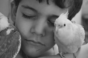 Foto em preto e branco de Francisco, em close, de olhos fechados e com dois pássaros próximos ao rosto, em sinal de carinho.