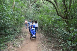 Foto de uma trilha repleta de árvores, com um caminho em terra ao meio. Cinco pessoas, de diferentes idades, estão andando. À frente, está uma jovem negra, cadeirante, que sorri.