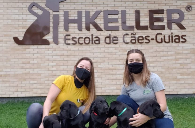 Foto de duas mulheres agachadas em um gramado. Ambas usam máscaras de proteção no rosto. Elas seguram quatro cães filhotes, da cor preta, da raça labrador. Ao fundo, há uma parede de tijolinhos com a aplicação do logo da Helen Keller, Escola de Cães-Guias.