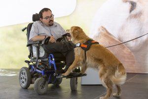 Foto de um homem em uma cadeira de rodas azul com um cão de assistência da raça golden retriver.
